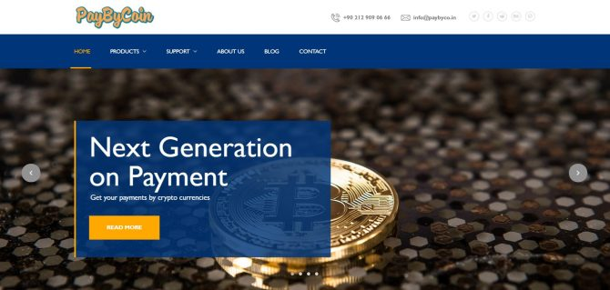 Pay By Coin